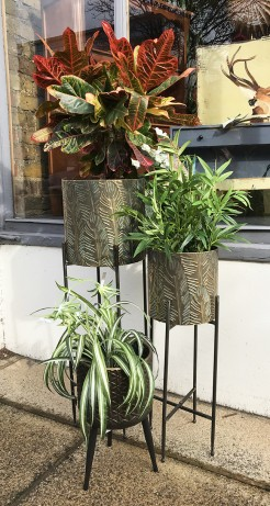 Gold Metal Planters on Stands