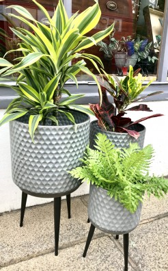 Metal Planters on a Triple Legged Stand
