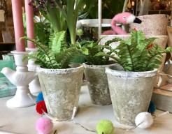 Mini Fern and Stone or Ribbed Pots