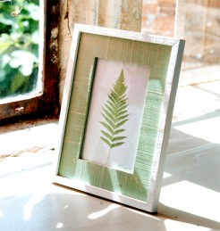 Green and White Photo Frames